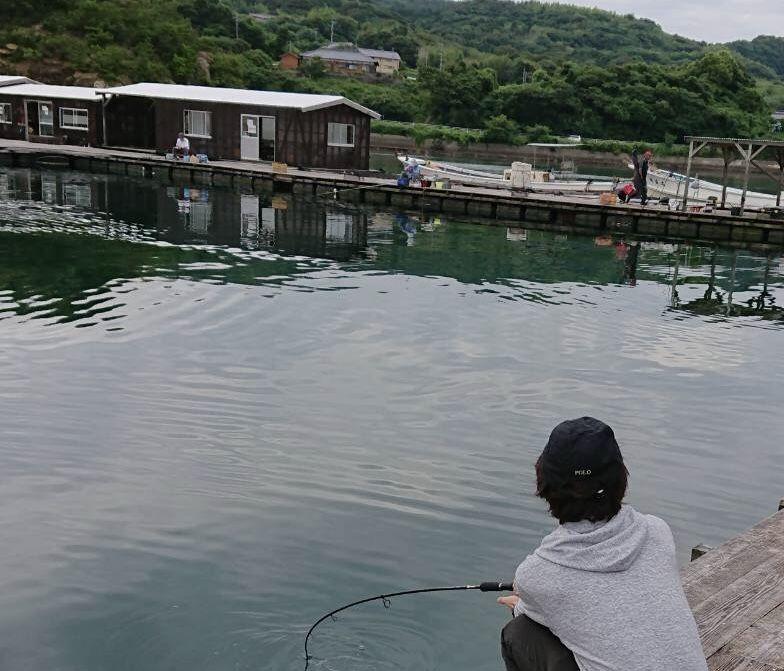 湾 センター 仮屋 遊漁