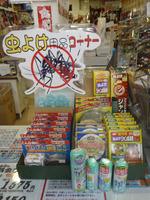 夏の夜釣りの必需品!!