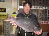c0216_nakazato