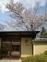 0803嵐山004