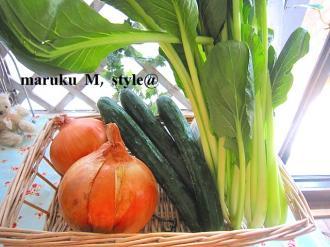 O野菜1ミニ