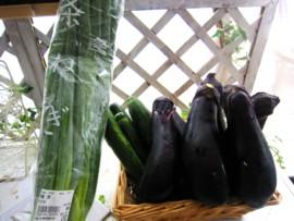 実家野菜6