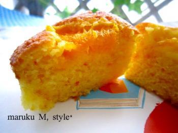 オレンジケーキ1m