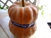 かぼちゃさん1