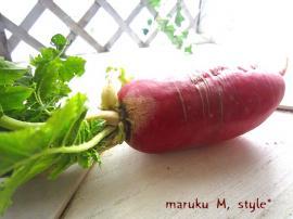 野菜15m