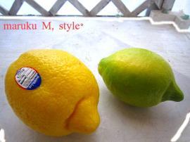 レモン大根6m