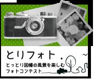 bnr_toriphoto-ver3_190-160
