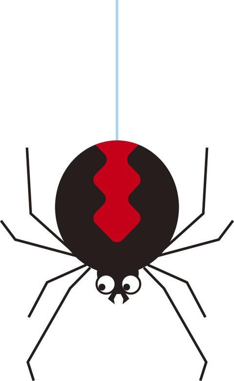 毒蜘蛛セアカゴケグモを殺処分した。【画像あり】
