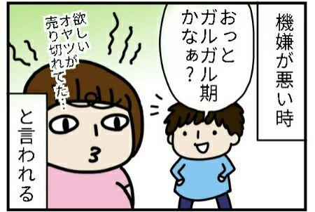 [画像:804b834c.jpg]