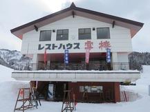雪椿 (5)
