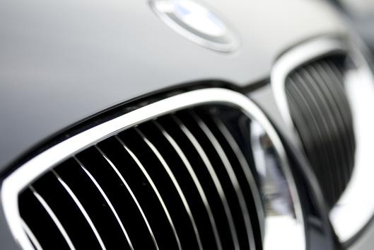 BMW kidney grille