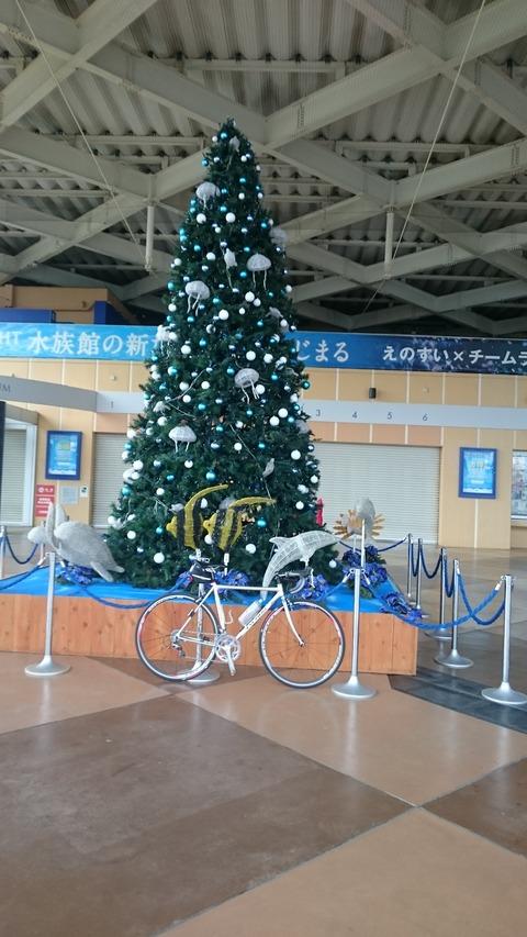 紅葉ライド 大雄山最乗寺