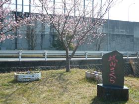 jyouyama 02