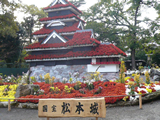 楽寿園 菊祭り