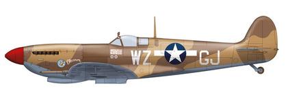 アメリカ空軍 Garth Jared大尉機