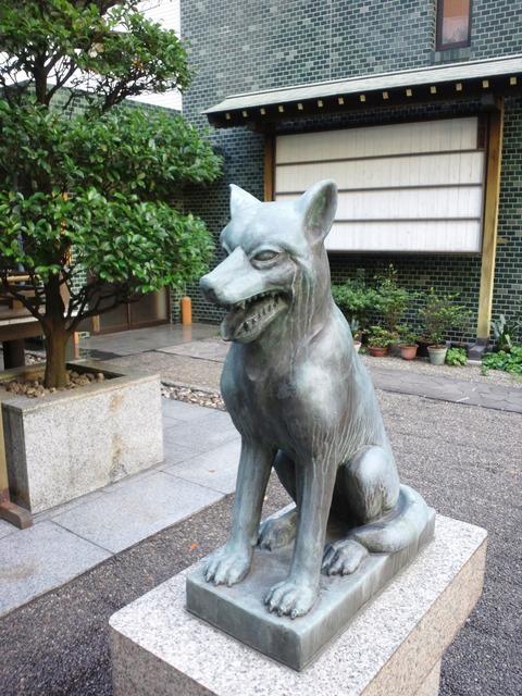 狼と渋谷 shibuya & wolf