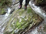 P7040046‗鍵層の海緑石砂岩