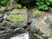 P7040058‗合流箇所近傍の海緑石砂岩