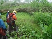 P7040020‗下ると普段熊がいる湿原