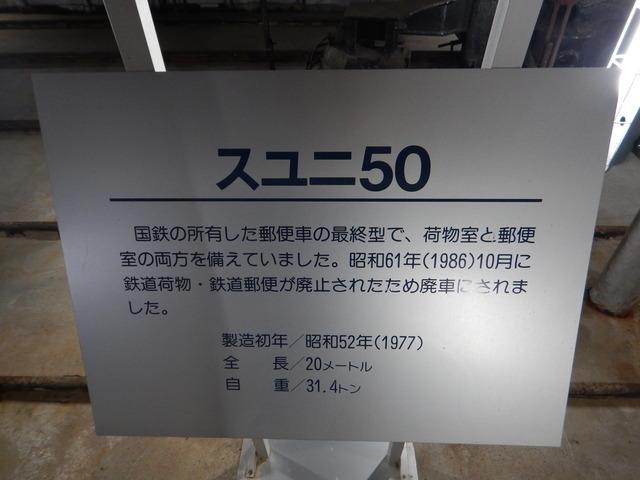 DSCN6551
