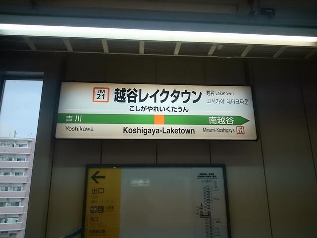 DSC_9310