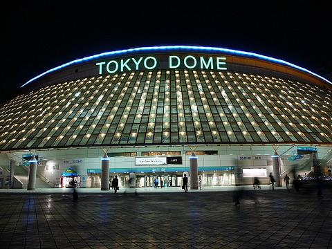 東京ドームのサプライズってなによ?【AKB48G】