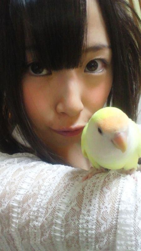 hitasura_matome3256