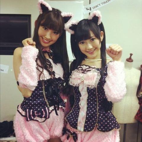 【AKB/小嶋陽菜】こじはるはただのエロ猫♪