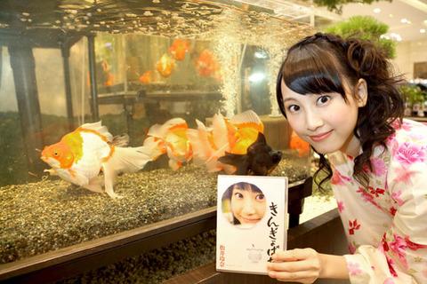 松井玲奈が年間DVDアイドル部門で売上1位に!!【SKE48/松井玲奈】