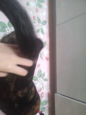 向田茉夏の猫が可愛い過ぎる件【SKE48/向田茉夏】