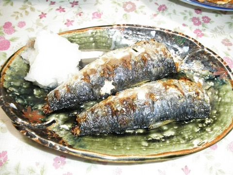 鰯の焼き魚