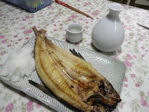 トビウオの焼き魚