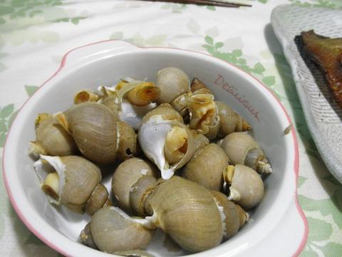 つぶ貝の塩煮