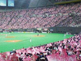 ピンク色に染まった札幌ドーム桜祭り