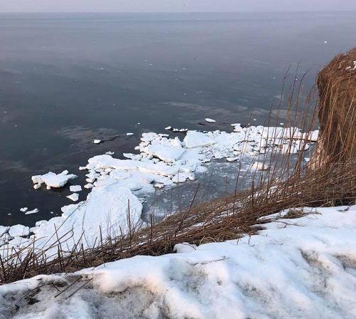 流氷の残骸