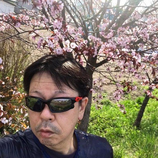 桜とおいら