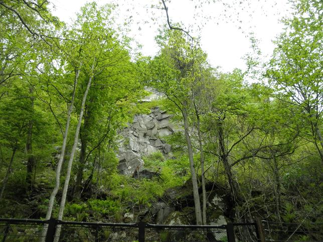 奥入瀬の岩