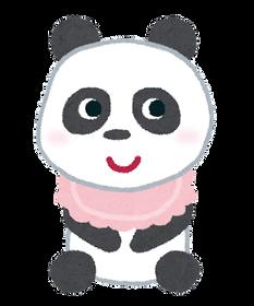 panda_baby