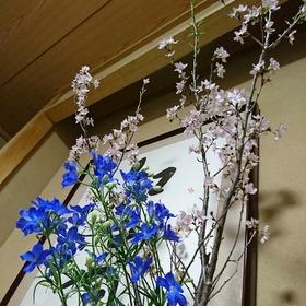 21-03-15-20-48-01-716_photo