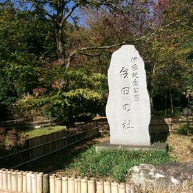 20-11-22-10-32-43-777_photo