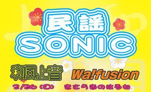 sonic_h29