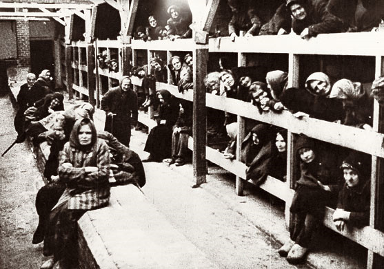 アウシュヴィッツ=ビルケナウ強制収容所の画像 p1_18