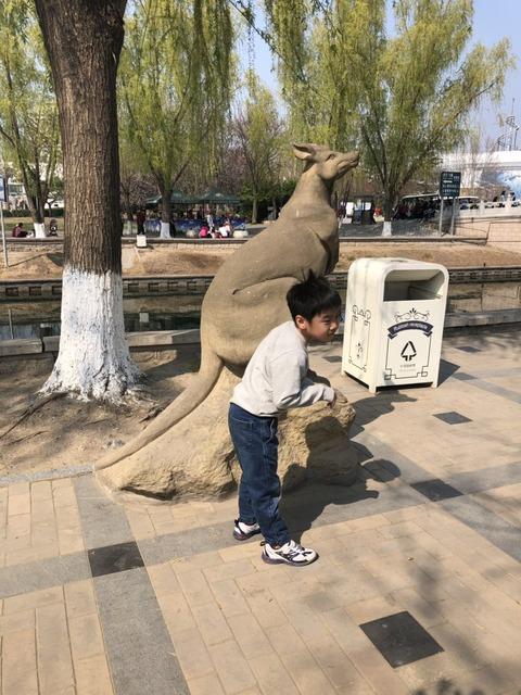 beijing_zoo
