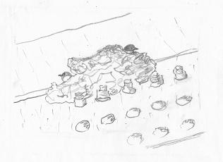 イワツバメ巣作り