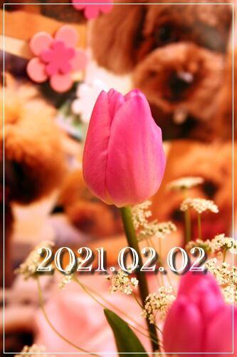 s2021_02010004