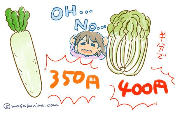 野菜高騰1