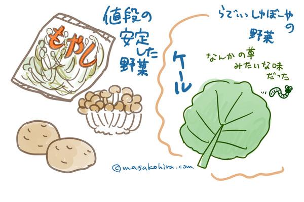 野菜高騰2