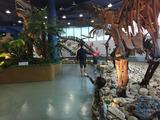 ミホ博物館1