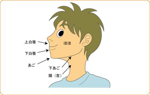 illust_face