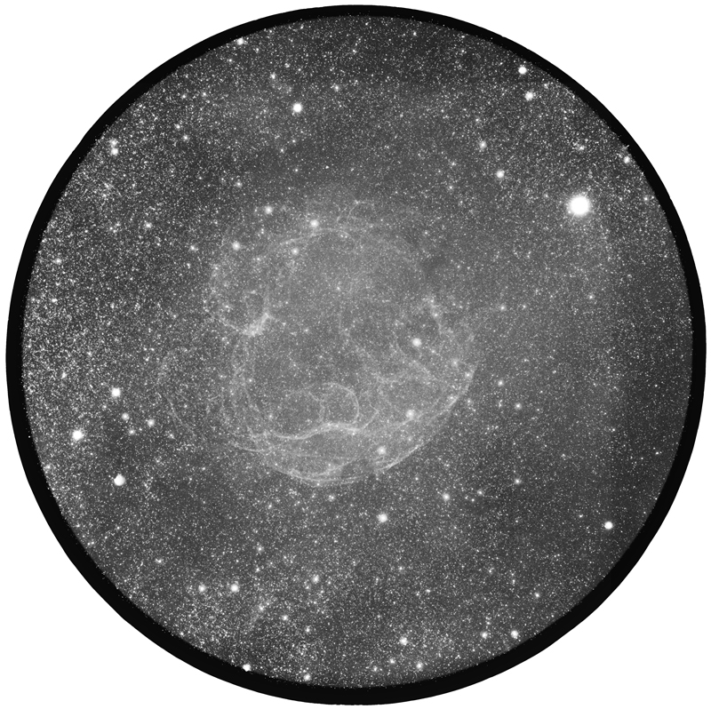 42616bf6.jpg